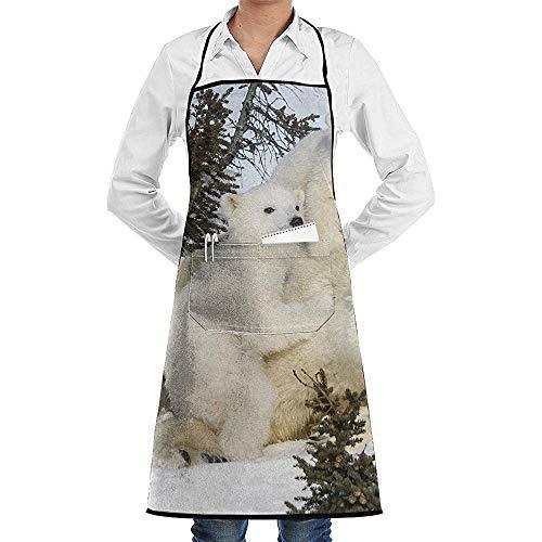 Schort Polar Bear Cub En Moeder Koken Grill Lange Volledige Zwarte Keuken Unisex Restaurant schorten Verstelbare Bib Met Zakken Bbq Volwassen Bakken Crafting Mens Chef Tuinieren Womens Polyester