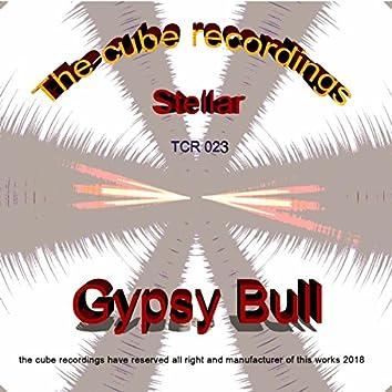 Stellar (Gypsy Bull Remix)