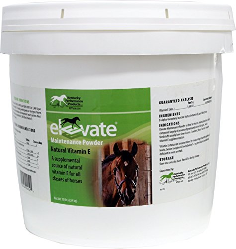 Kentucky Performance Products Elevate Maintenance Powder, 10 Pounds, Vitamin E Horse Supplement Illinois