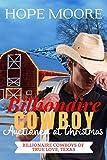 Billionaire Cowboy Auctioned at Christmas (Billionaire Cowboys of True Love, Texas Book 4) (English Edition)