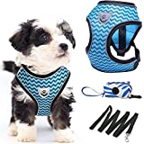 Small Dog Harness and Leash Set, Puppy Harness for...