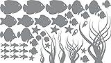 GRAZDesign Bad Deko Tattoos Klebefolie Aquarium, Fliesentattoo maritim Meer Ozean Nordsee Ostsee, Wandtattoo Badezimmer Fische Muscheln / 100x57cm 074 Mittelgrau