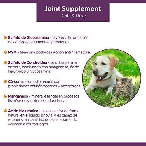 Kilva Supplément Naturel Anti-inflammatoire pour Chiens et Chats, 120 Cap. Chondroïtine, Glucosamine, Acide hyaluronique, Curcuma, MSM, Manganèse