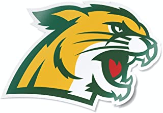 Collegiate Car Decal Sticker by Nudge Printing (Northern Michigan University)