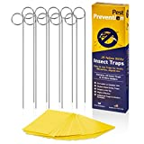 GNAT KILLER TRAP FOR OUTDOORS | Long-Lasting Yellow Sticky Insect Traps That Work | Fungus Gnat Killer | Gnat Control Outdoor Trap | Whitefly | Aphid | 25 Dual-Sided Traps & 10 Wire Holders