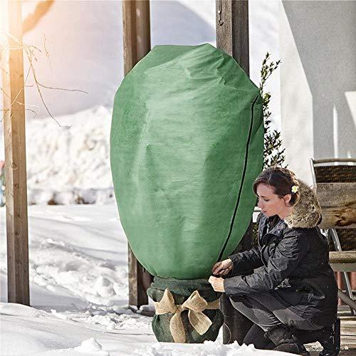 Banane - Sacco di Protezione Invernale per Piante da Giardino, Pieghevole, Super...