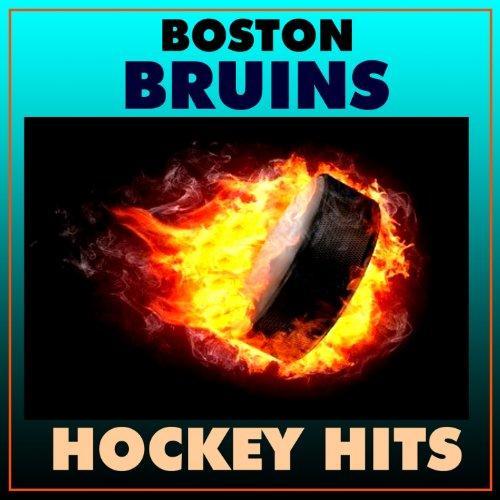 Boston Bruins Hockey Hits