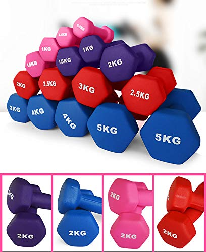 Multiple Weight Options Neoprene Dumbbell Home Exercise for Ladies Kids Arm Hand Weights Pilates Dumbbells in 0.5kg 1kg 2kg 2.5kg 3kg 4kg 5kg / 1 Pcs Dumbbell (Color : Blue, Size : 2.0KG)