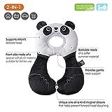 Zoom IMG-2 ben bat panda se viaggio
