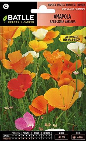 Semillas de Flores -...