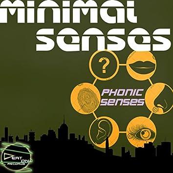 Minimal Senses