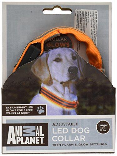 Collar de perro LED
