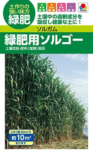 タキイ種苗(Takii Shubyo) 緑肥 ソルガム 緑肥用ソルゴー BSG558EBF
