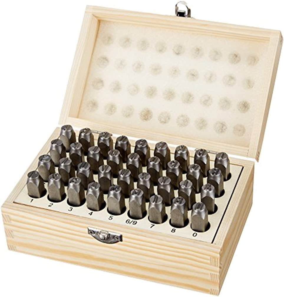 AmazonBasics Metal and Leather Stamp Kit - 5/16-Inch