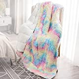 Wemore Shaggy Long Fur Faux Fur Weighted Blanket,Cozy and Fluffy Plush Sherpa Long Hair Blanket for Adult 15lbs,Fluffy Fuzzy Sherpa Reverse Heavy Blanket for Bed,Couch, Rinbow 48 x 72 Inches