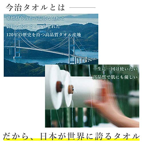 昭和西川『今治認定タオルピローケース』