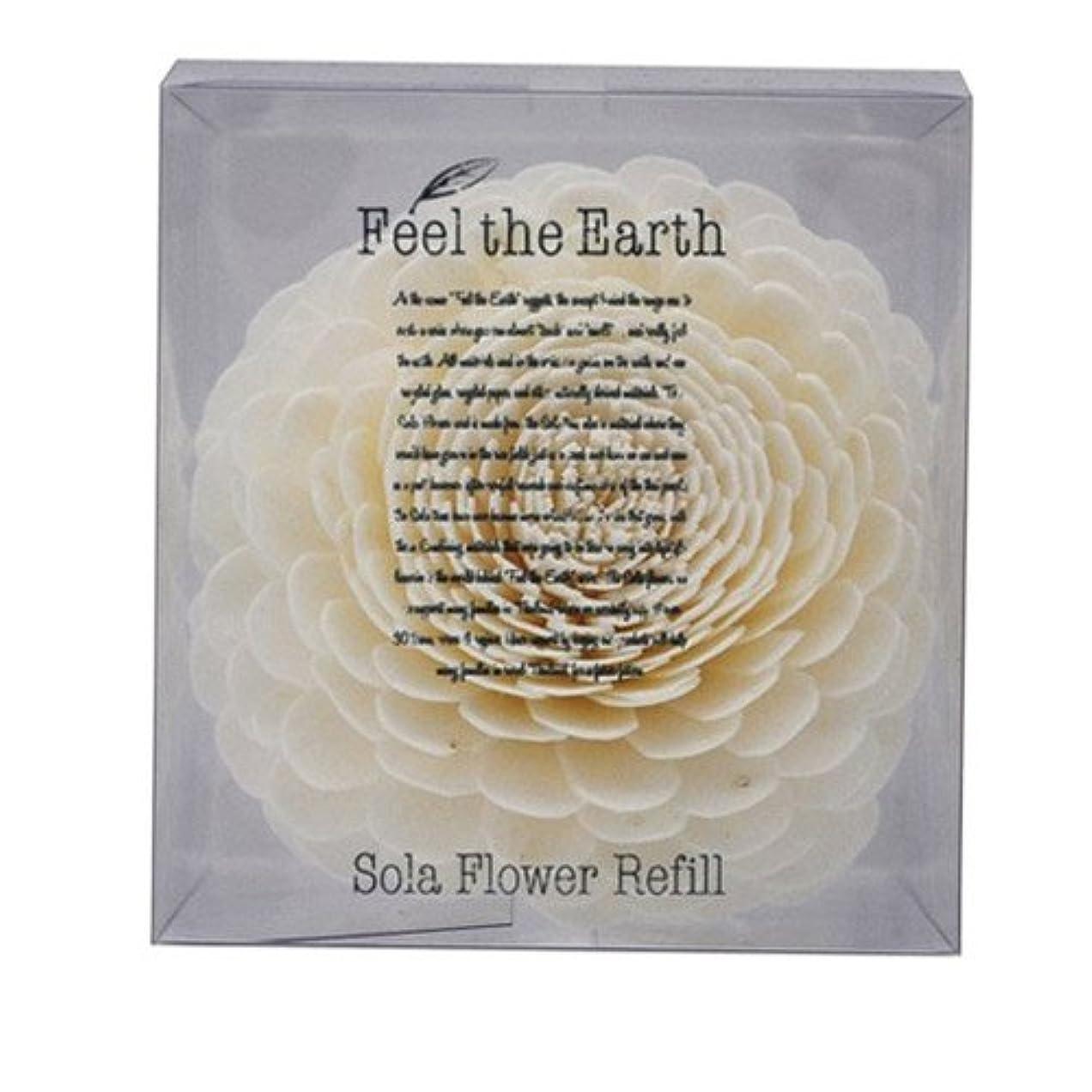むき出しロープ風味FEEL THE EARTH ソラフラワー リフィル ダリア DAHLIA フィール ジ アース