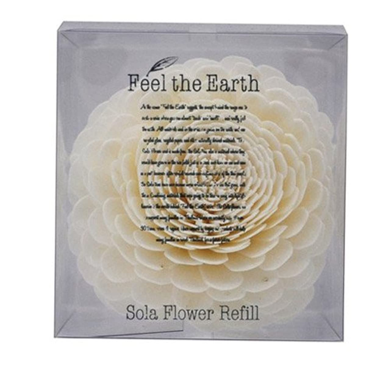 議論する震えお父さんFEEL THE EARTH ソラフラワー リフィル ダリア DAHLIA フィール ジ アース