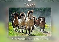 Pferde Vom Minishetty bis zum Kaltblut (Wandkalender 2022 DIN A3 quer): Lustiger Pferdemixkalender (Monatskalender, 14 Seiten )