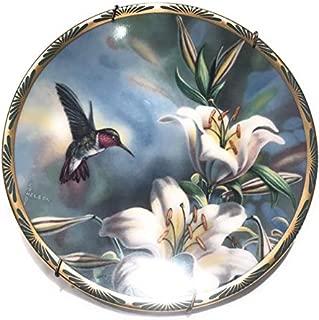 pickard hummingbird plates