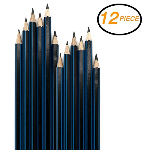 Emraw Pre Sharpened Drawing Sketching B Pencil Set (HB, 2B, 4B, 6B, 7B, 8B), Pack of 12 Premium Wood Cased Graphite Art Pencils for Beginners & Professional Artists, Adults & Kids