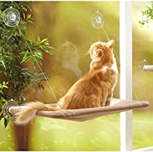 ANTOLE Cat Window Perch Pet Window Perch Hammock Cat Shelves pet Resting Seat with Upgraded 4 Big Suction Cups for Space Saving Cat Bed Holds Up to 50lbs