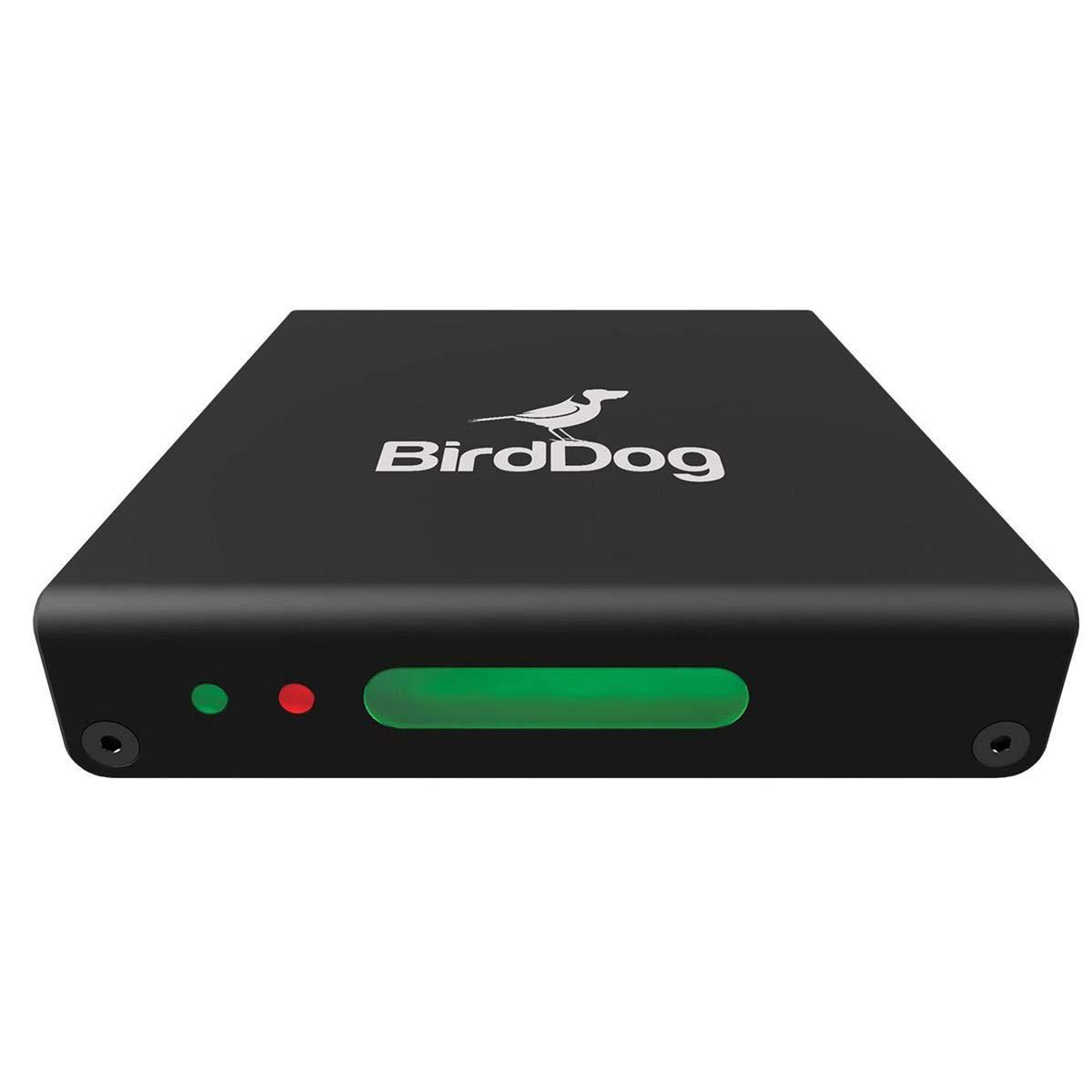 BirdDog Mini HDMI to NDI Encoder: Amazon.com.au: Electronics