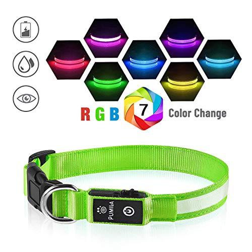 Pumila LED Hundehalsband Leuchthalsband Hunde Halsband USB Wiederaufladbar Wasserdicht 7 Farbwechsel Halsband Hund Klein Groß Mittel Super Helle Sicherheit für Die Nacht - Grün - XS