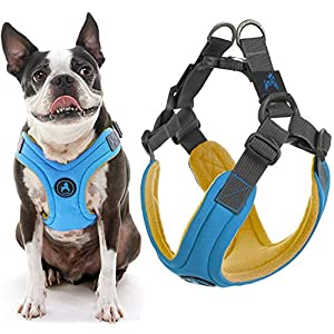 Gooby Dog Harness – Escape Free Memory Foam Step-in Small Dog Harness – Perfect on The Go Four-Point Adjustable – No Pull Harness for Small Dogs or Cat Harness