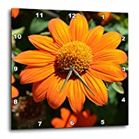 3dRose サンシャイン メキシコ ひまわり 花 写真 - 壁時計 15 x 15インチ (DPP_30384_3)