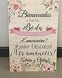 Cartel Bienvenidos a nuestra Boda, gracias por venir, con peonias rosas