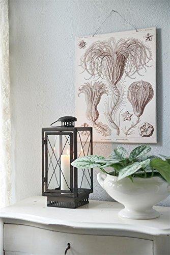 Jeanne d Suite Arc Living Vintage Home Shabby lantaarn kaarsenhouder brocante lantaarn handvat H 34 cm kandelaar tuinlantaarn