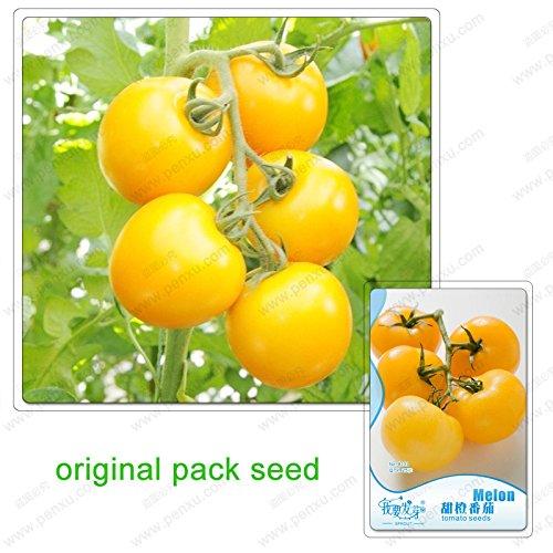25 graines / Paquet, graines de tomate orange, tomate, Balcon fruits en pot, les graines de tomates, fruits de jardin en pot