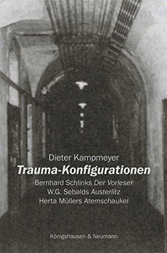 Trauma-Konfigurationen: Bernhard Schlinks ,Der Vorleser' - W.G. Sebalds ,Austerlitz' - Herta Müllers ,Atemschaukel' (Epistemata Literaturwissenschaft)