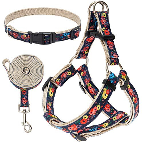EXPAWLORER Small Dog Harness and Leash Set with Collar - Heavy Duty & Adjustable Basic Harness No Pull for Small Medium Dogs Flower Pattern