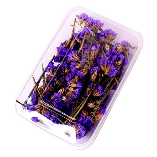 Faguo 1Box Crystal Epoxy Filler Dry Flower Mixed Nail Stickers Decorations Art Crafts