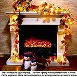 Herbst lichterkette, Ainkedin Herbst Blättergirlande,lichterkette,10 Ahornblatt Licht,Länge 1.5 Meter Benutzt für herbstdeko und weihnachtsdeko halloween deko party deko tischdeko - 2