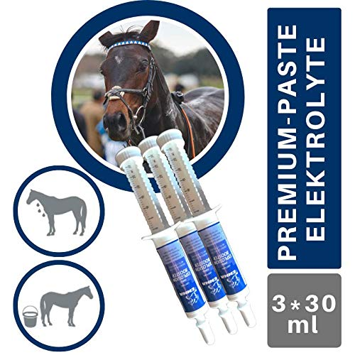 EMMA® Elektrolyte I Booster I Paste Mineralstoffe Natrium (Salze) Kalium Magnesium I Vitamin B-Komplex B1 B2 B6 B12 I Durchfall Schwitzen I Mineralien Hydration Regeneration Pferd 3St