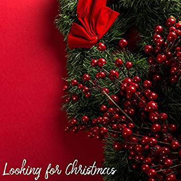 Looking for Christmas