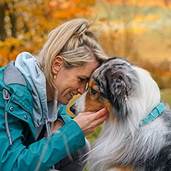 Ida Plus - BARF Vitamine - vitamines pour chiens - avec 17 vitamines - prévient les carences alimentation BARF équilibrée (200 ml)