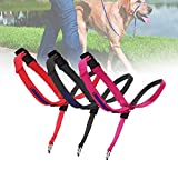 Dog Head Collar for Training, Colorful Head Harness for Dogs to Stop Pulling, Adjustable and Easily Control Head Halter Pet Supplies (red)