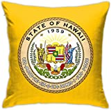 HOJJP Official Seal of Hawaii Square Throw Pillow Covers Set Cushion Cases Pillowcases for Sofa Bedroom Car 18 X 18 Inch