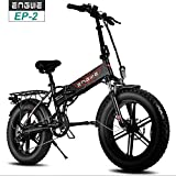 ENGWE-500W 48V 20-inch Fat Tire Folding Electric Bicycle/Commuter Bicycle/Mountain Beach Snow Bike,...
