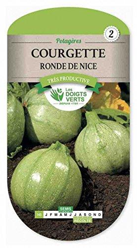 Les doigts verts Semence Courgette Ronde de Nice