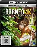 5179nZb2wxL. SL160  - Sehenswürdigkeiten Borneo - Orte, die ihr in Borneo nicht verpassen dürft