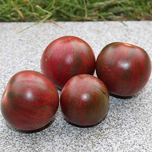 10 Samen Artisan Purple Bumble Bee Tomate - guter Ertrag, außergewöhnliche Sorte