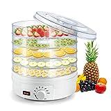 Deshidratador de alimentos eléctrico, 220 V, 5 niveles, sec