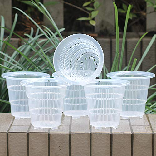 Meshpot 10cm Clear Plastic Orchid Pots With Holes - 6 Pack