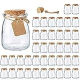 Glass Jars, Brajttt Mini Yogurt Jars 40 Pack, 7 oz Glass Favor Jars with Cork Lids, Pudding jars, Glass Containers with Lids, Mason Jars Wedding Favors Honey Pot with Label Tags and String