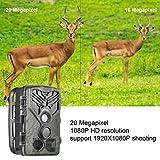 Immagine 2 digitnow fotocamera da caccia 20mp